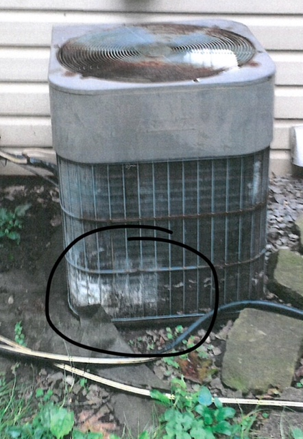 Dog urine damaged air conditioner